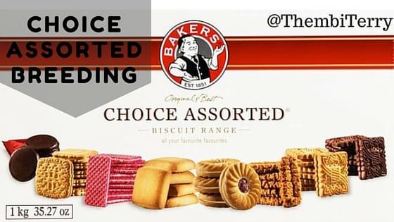 Choice Assorted Breeding