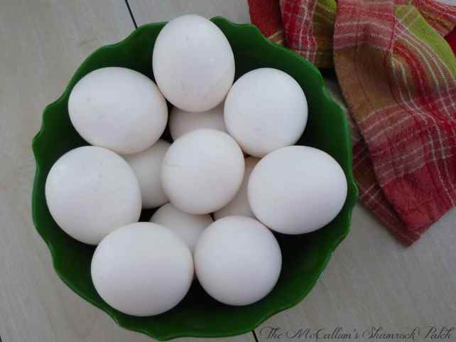 #Fresheggs #eggs #quiche