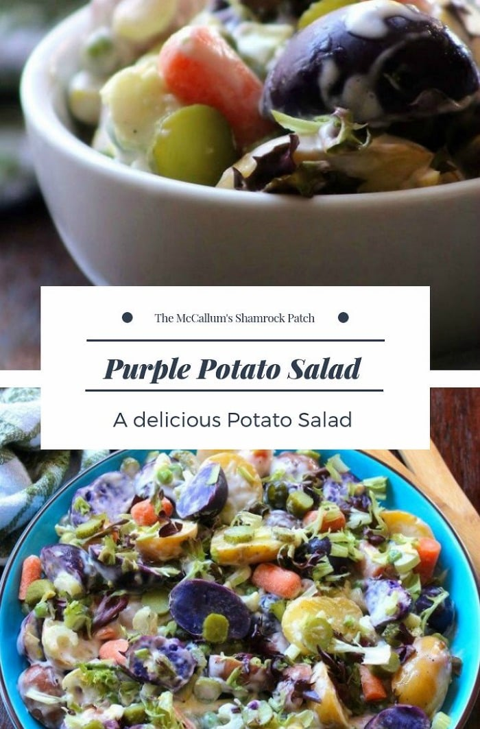 This vibrant looking Purple Potato Salad is Easy to make and deliciously gorgeous to look at on the dinner table; made from a spectacular tasting colorful medley of small purple potatoes, new potatoes, small red potatoes, crunchy baby dill pickles, crisp celery, red salad onions, sliced carrots, and garden fresh herbs.