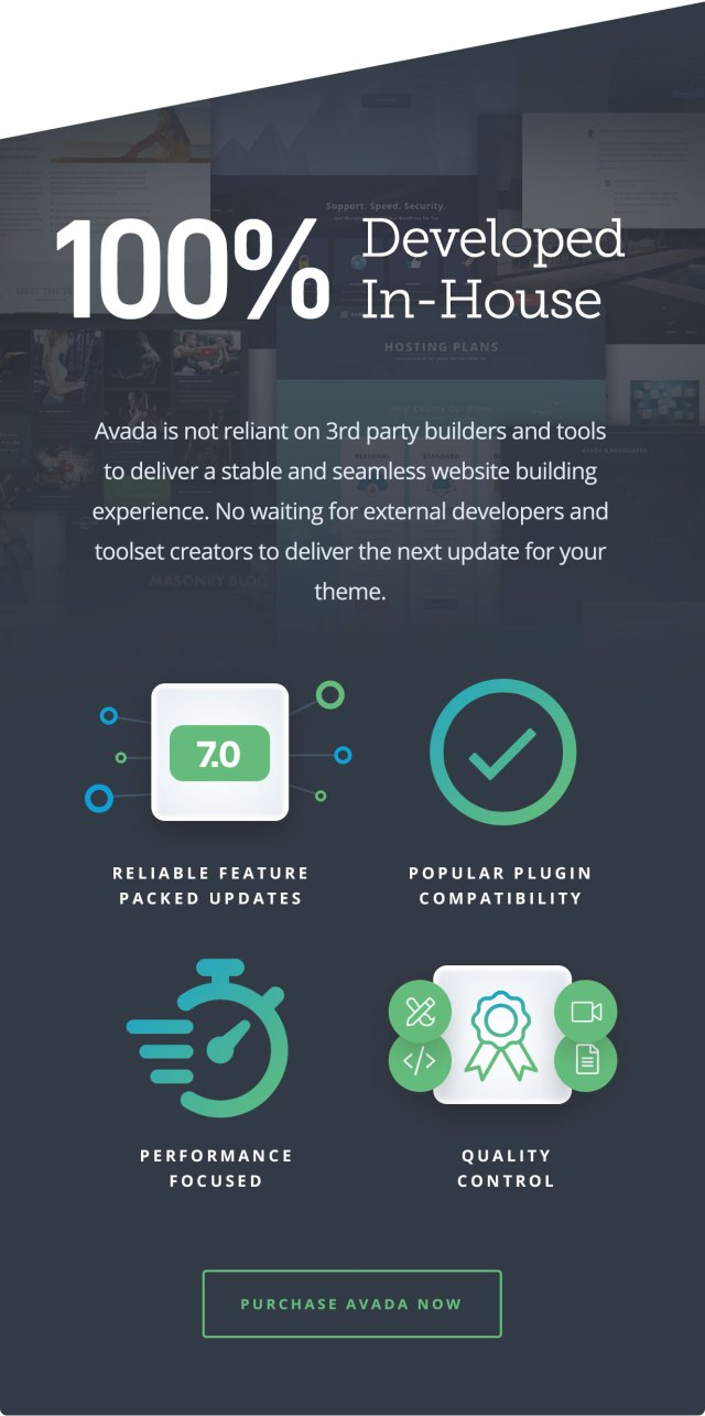 Avada   Website Builder For WordPress & WooCommerce - 26