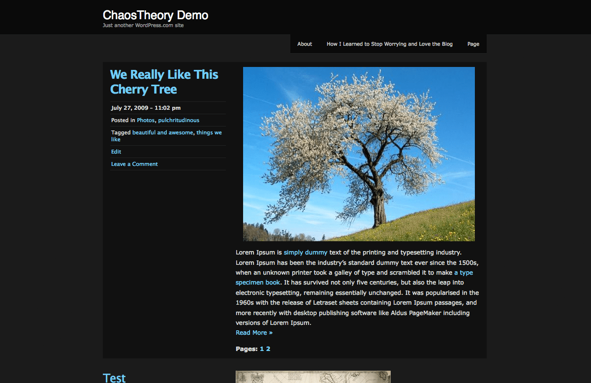 Screenshot of the ChaosTheory theme