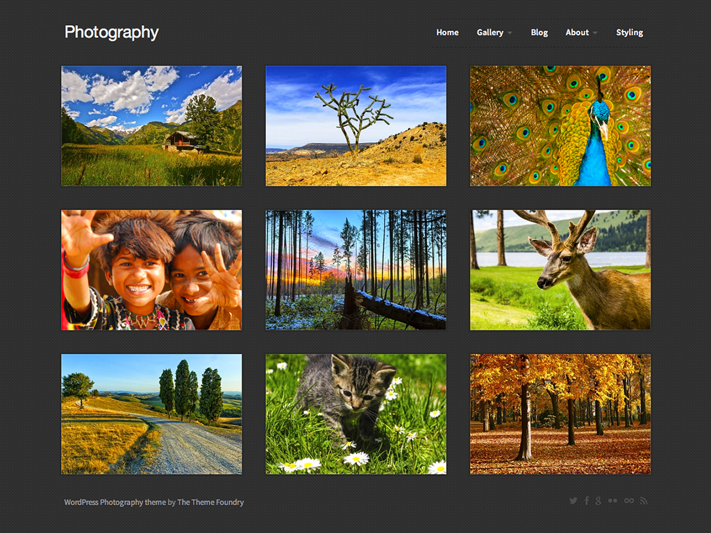 Screenshot of the Photography theme