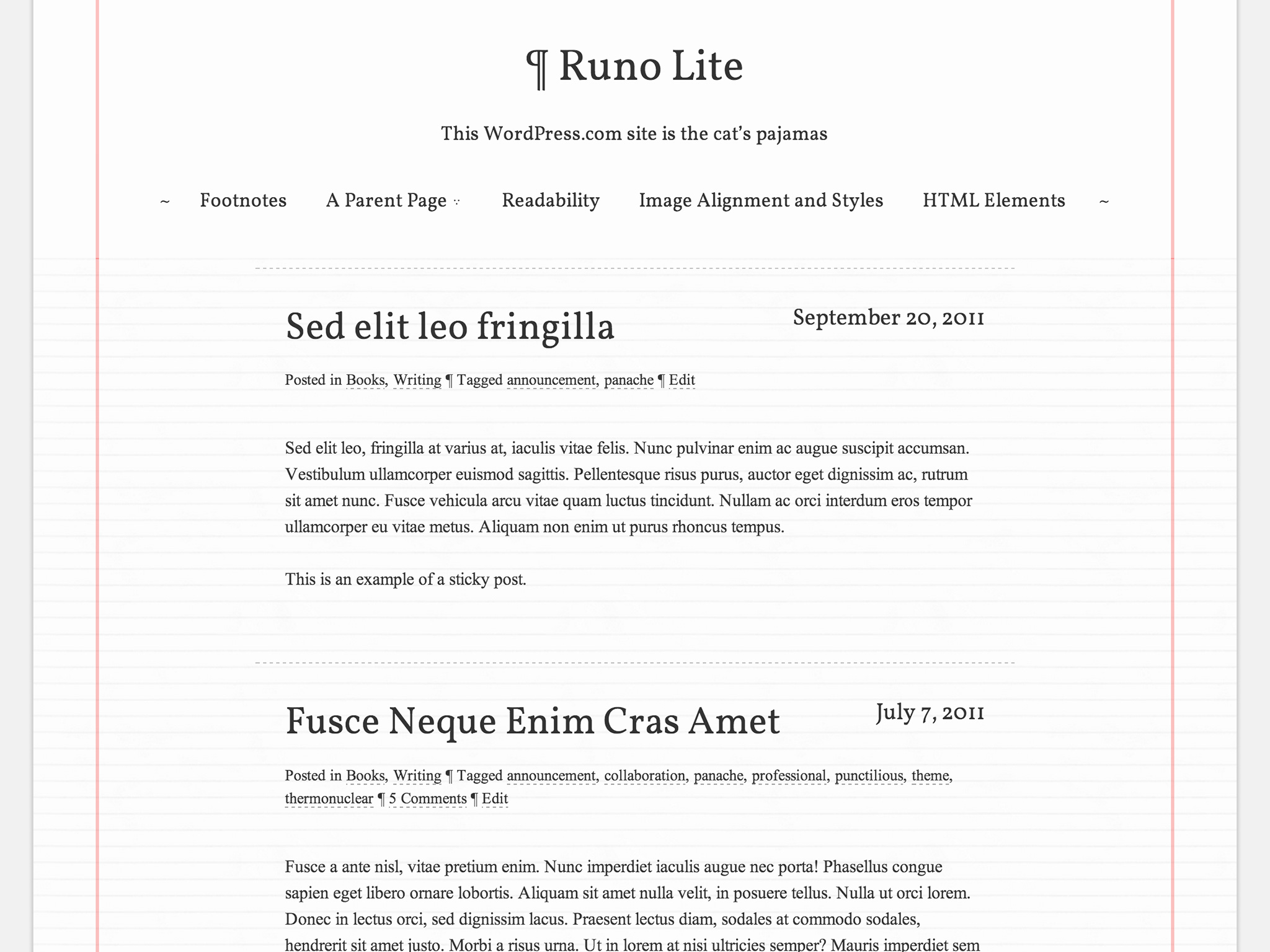 Runo Lite WordPress Theme