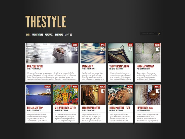 Screenshot of the TheStyle theme