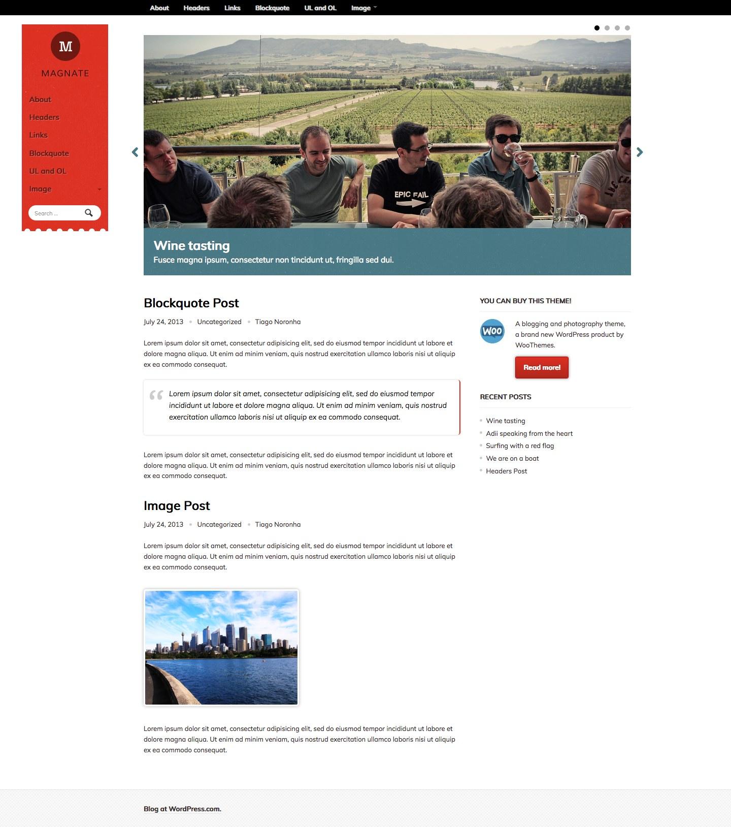 Screenshot of the Magnate Express theme
