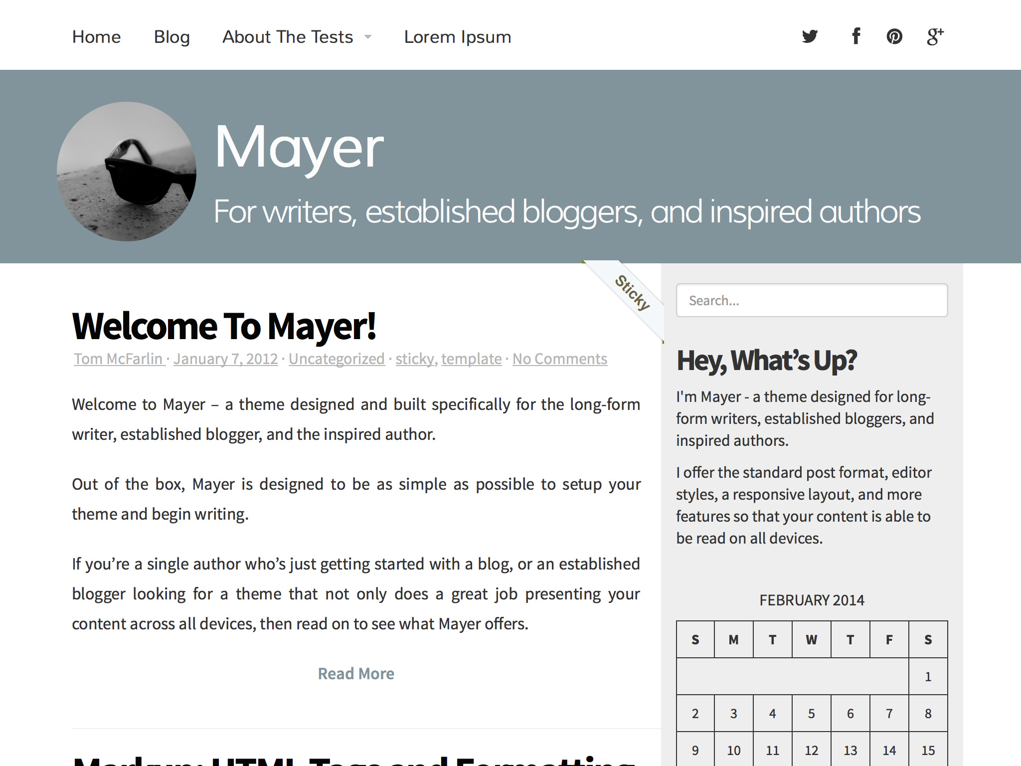 Screenshot of the Mayer theme