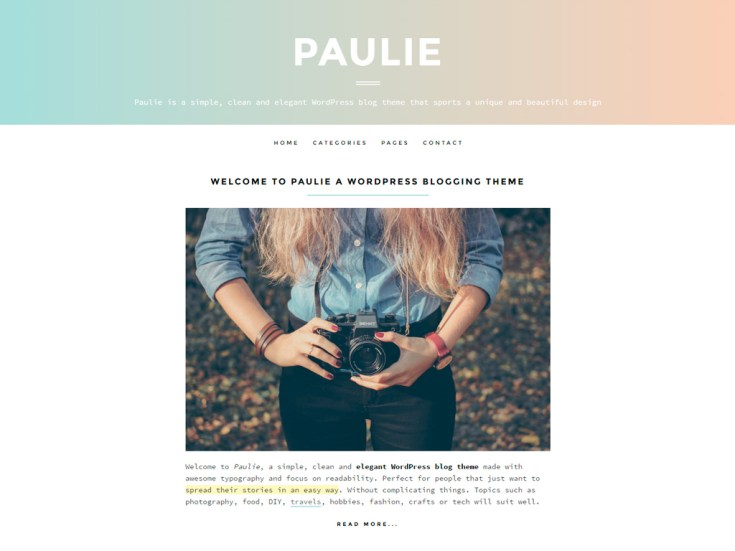 Screenshot of the Paulie theme