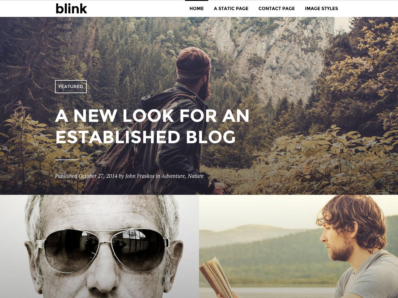 Blink WordPress Theme