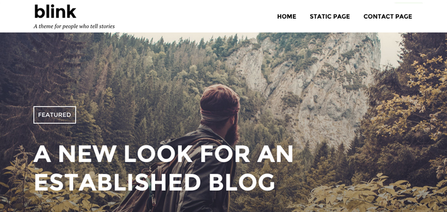 Blink WordPress Theme