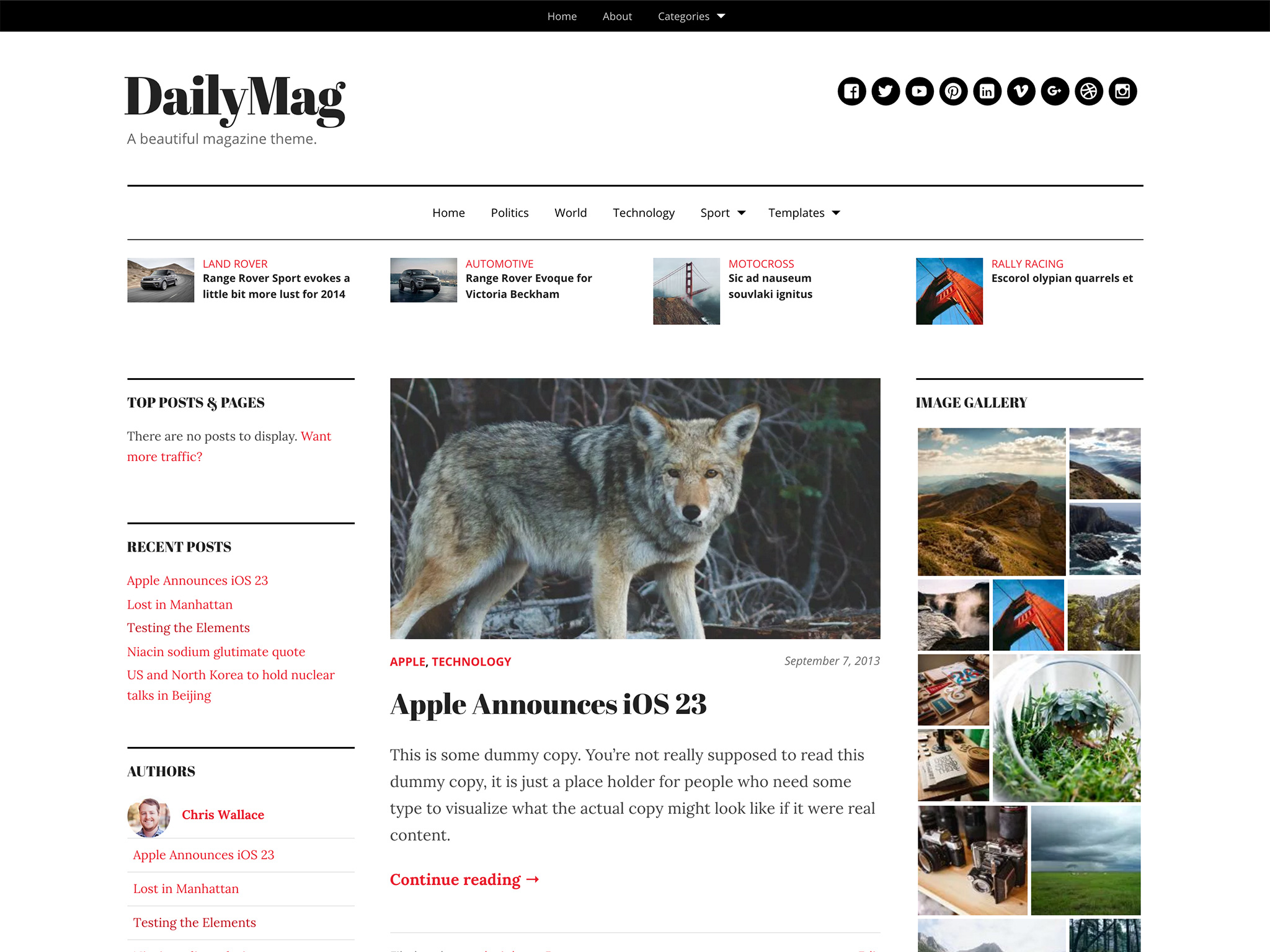 Screenshot of the DailyMag theme