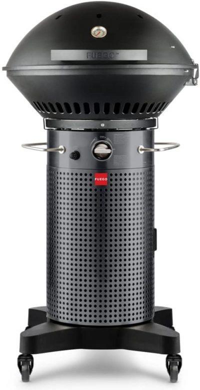 Fuego Professional 24-Inch 2-Burner Propane Gas Grill