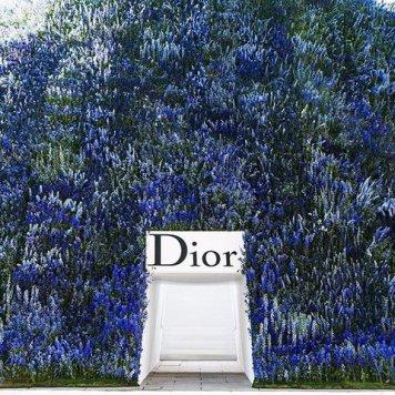 01-dior