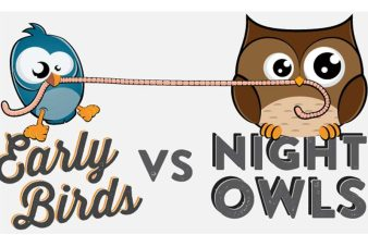 Image result for night owls