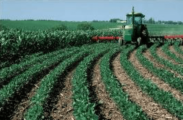 Tillage Farming