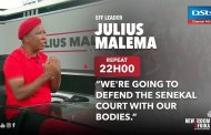 Seven days on Twitter: #Malema - The Great Pretender!