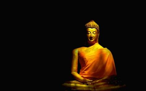 buddhadraped