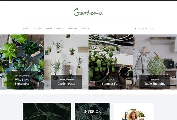 TF 11 Gardenia