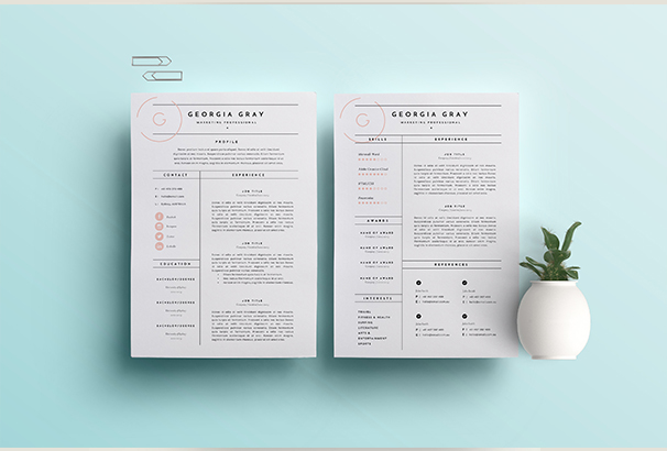 Page Resume Template Doc Bestfa Tk  3 Page Resume