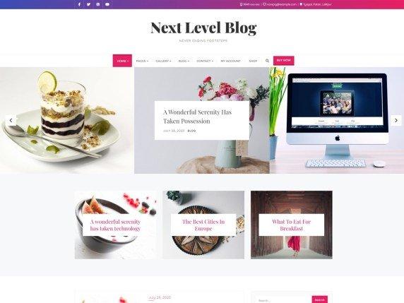 Best Free Minimal WordPress themes- Next level
