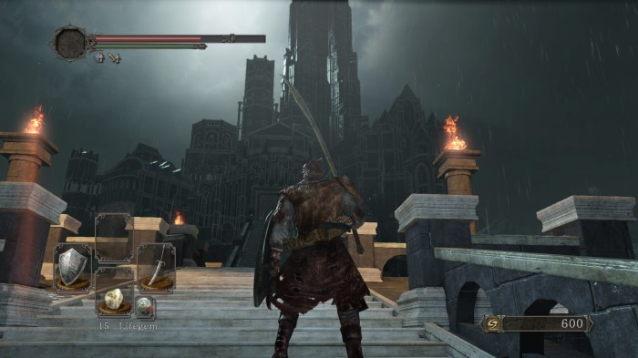 Drangleic castle is beautiful, scary, impressive and desolate all at the same time!