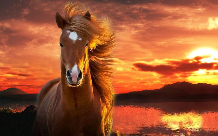 Early Fall Hd Wallpaper Horse Windows 10 Theme Themepack Me