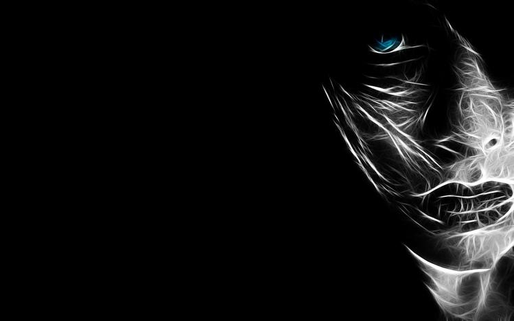 Dark Souls 3 Quote Wallpaper 1080p Emo Windows 10 Theme Themepack Me