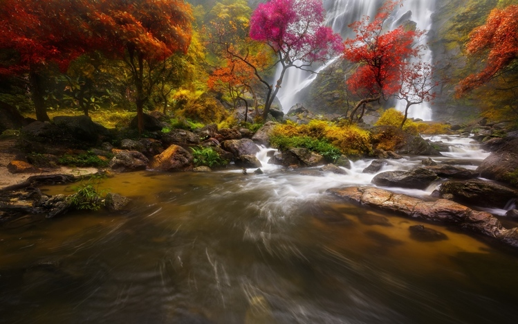 Fall Leaves Wallpaper Windows 7 Waterfall Windows 10 Theme Themepack Me