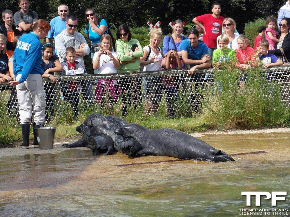 Bouwdewijn-Seapark-02-09-2012-(34)