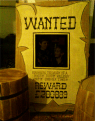 For a fun photo booth - how about a wanted poster!