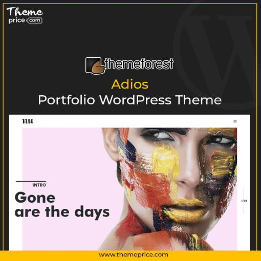 Adios | Portfolio WordPress Theme