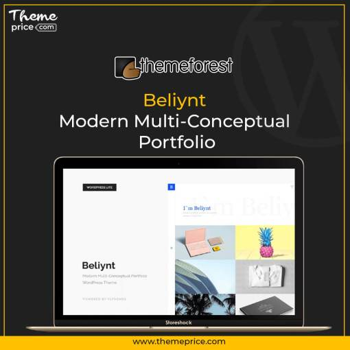 Beliynt – Modern Multi-Conceptual Portfolio