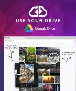 Use-your-Drive Google Drive Plugin for WordPress