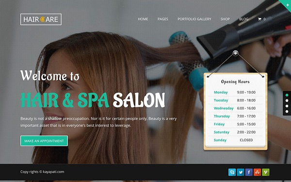 C:\Users\admin\Documents\spa\hair-care-wordpress-theme.jpg