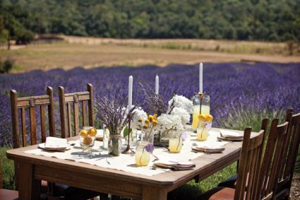 Outdoor reception by a lavender field