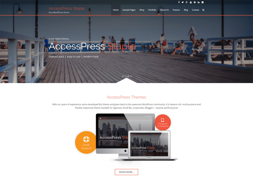 AccessPress Staple free wordpress theme