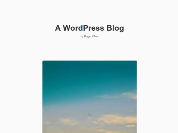 Acitpo wordpress theme