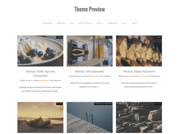 Actuate wordpress theme
