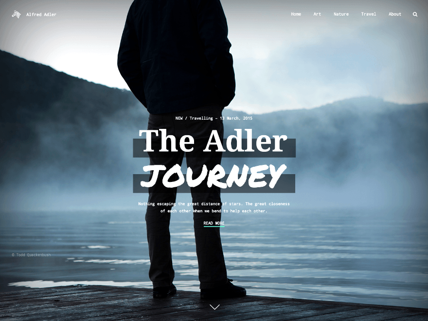 Adler free wordpress theme