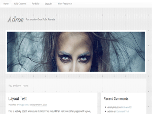 Adroa free wordpress theme
