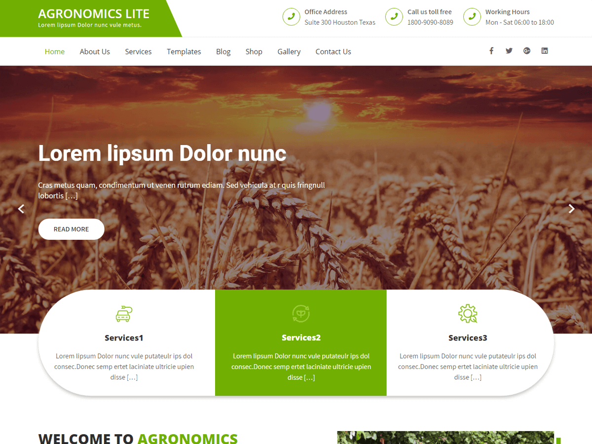 WordPress主题:Agronomics Lite