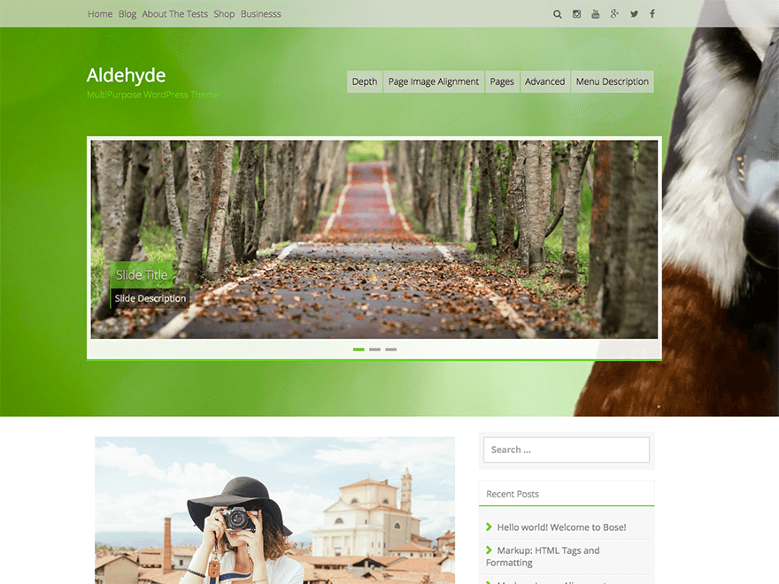 Aldehyde free wordpress theme