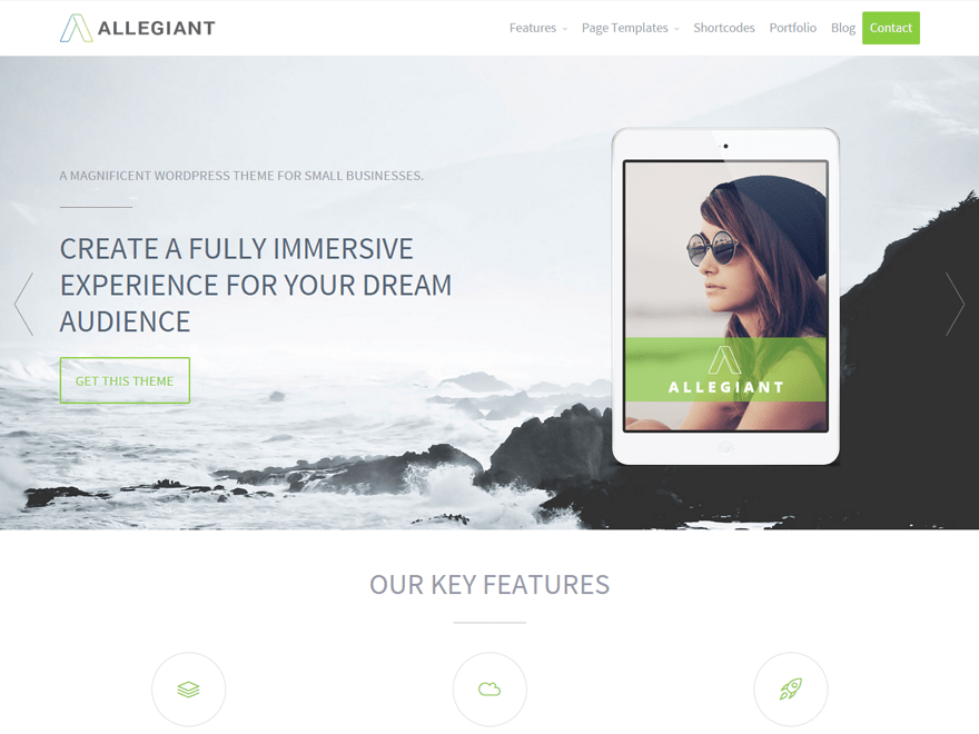 screenshot of Allegiant free WooCommerce theme