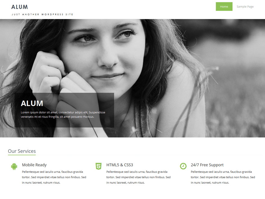 Alum wordpress theme