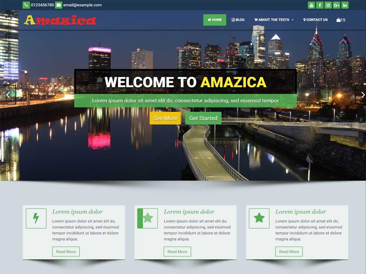 WordPress主题:Amazica Business