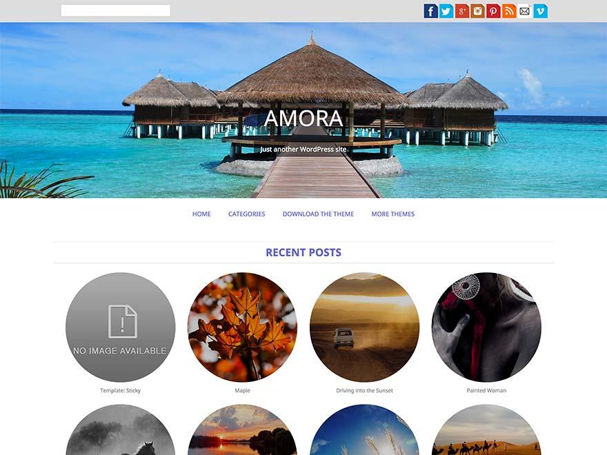 Amora free wordpress theme