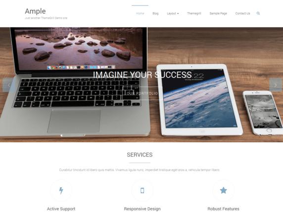 Ample Professional WordPress Theme