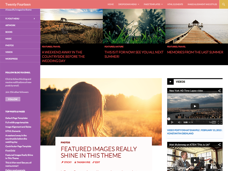 Anjirai free wordpress theme