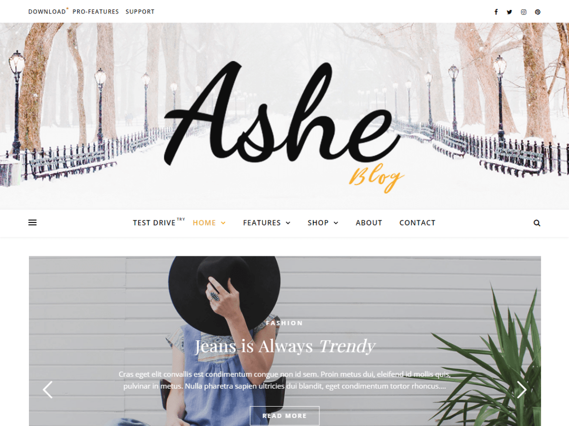 Ashe | WordPress.org