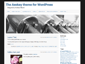 Asokay free wordpress theme