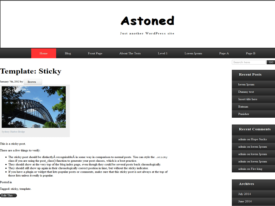 Astoned free wordpress theme